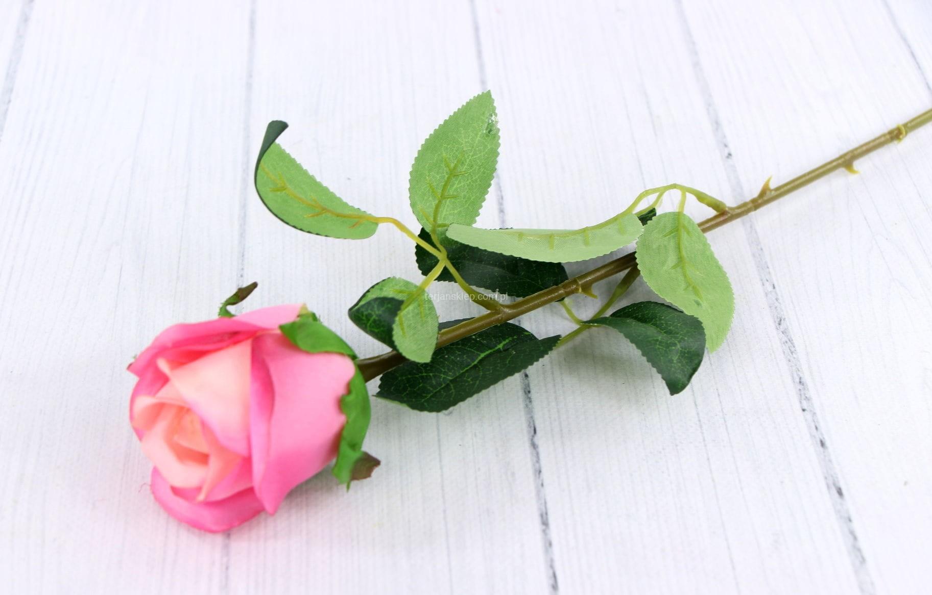 d1f6b18bb7a1b8 Róża gał. F17024 (6 szt x 1,80 zł) róż dwukolorowy - Sklep ...