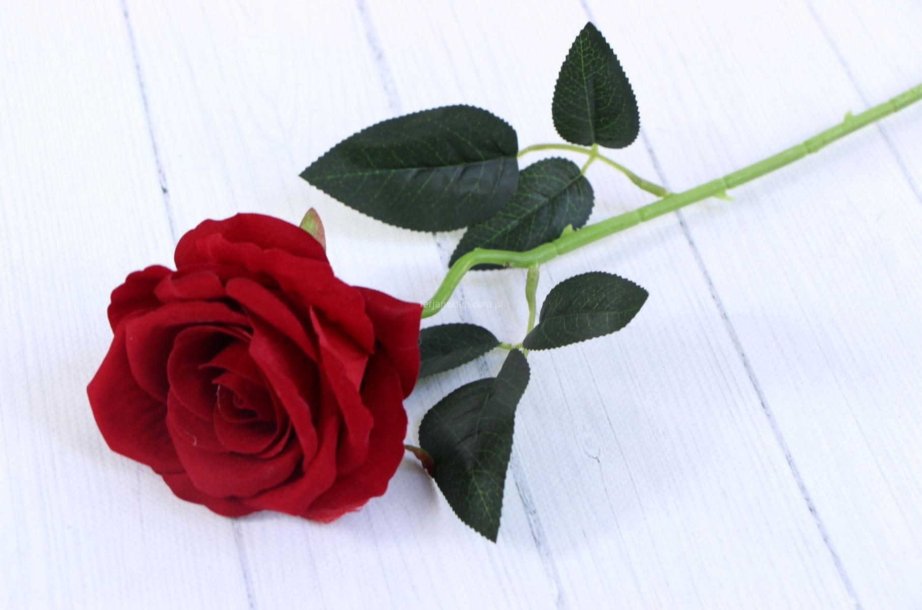ca4f7f365b9969 Róża gał. welur F19056 (red) 6 szt x 3 zł - Sklep internetowy TERJAN ...