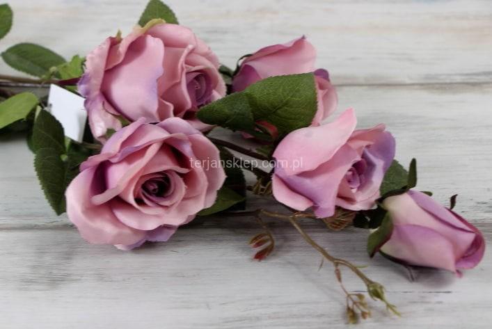 8b24b1bba76663 Róża gał. CS233 D (pink violet) - Sklep internetowy TERJAN hurtownia ...