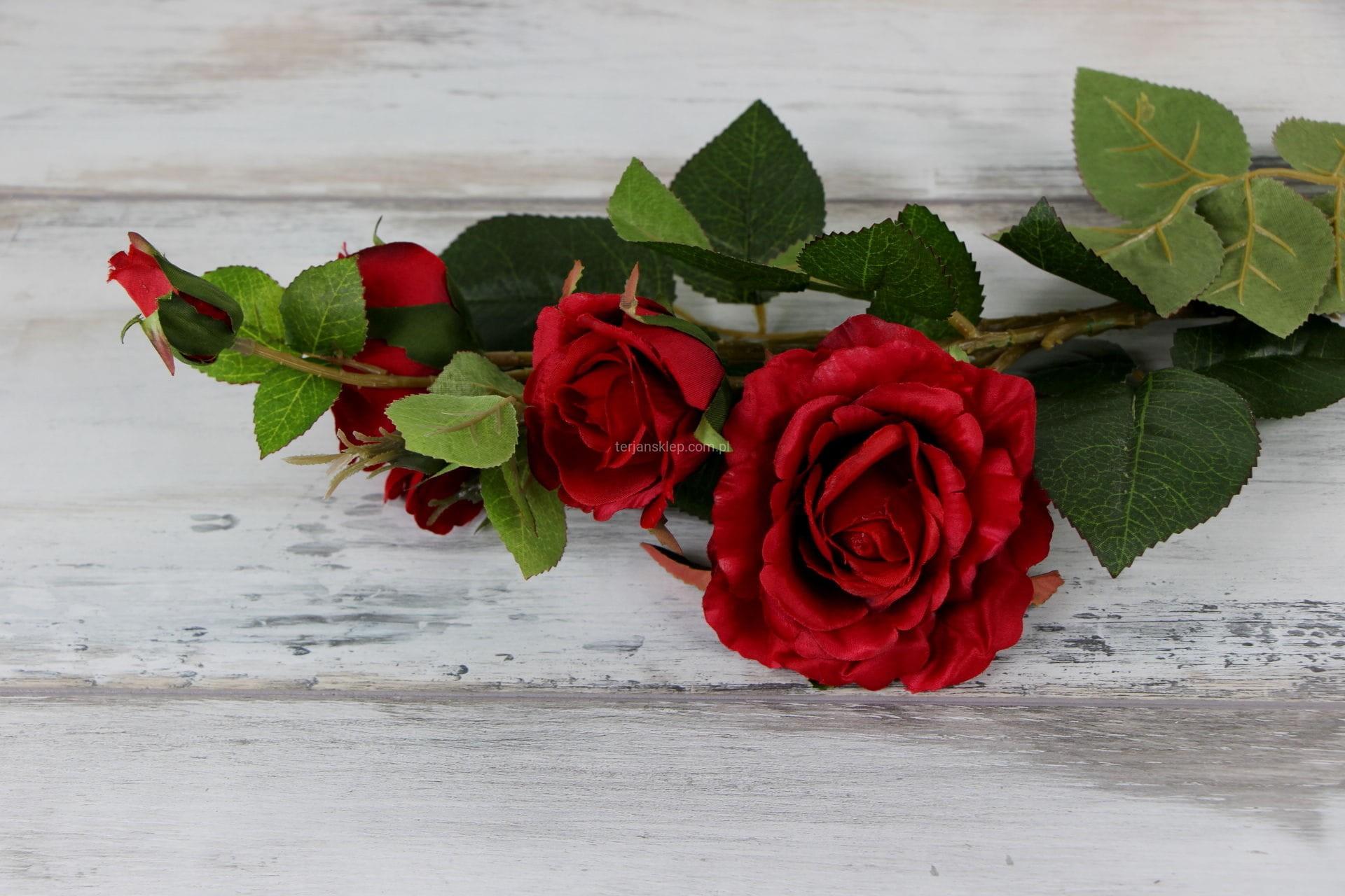 91c5bf2bc4247a Gał. róża