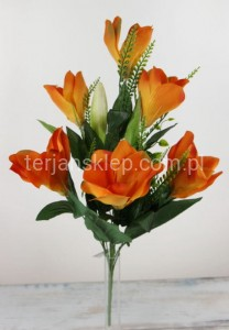 Bukiet magnolii TM15 (orange)