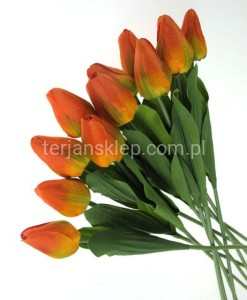 Tulipany wiązka F083 (12 orange yellow) 12 szt