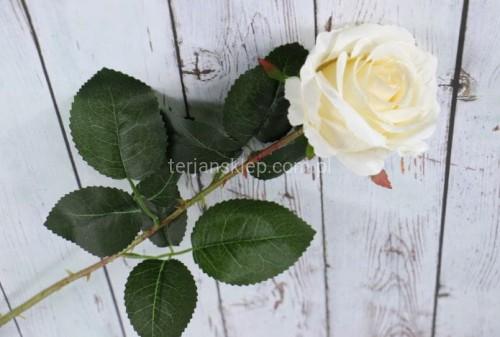 8f07ae6573fdea Róża gał. F16012 (6 szt x 4 zł) vanilie - Sklep internetowy TERJAN ...