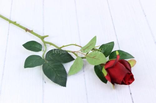 903940989a2eb0 Róża gał. F18432 (6 szt x 2,20 zł) red black - Sklep internetowy ...