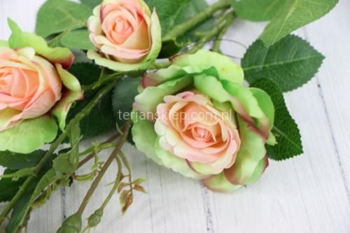 712ebf246f2c03 Gał. róża