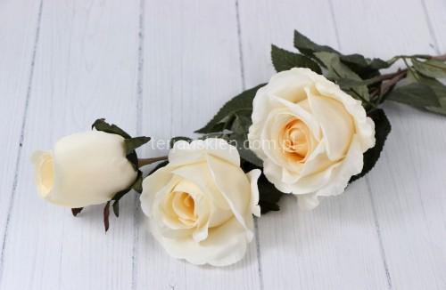 33b5d59b7657cf Róża gał.