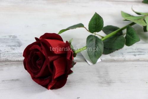 b7d85f6462b257 Róża gał. welur CS107 RED (1 szt) - Sklep internetowy TERJAN ...