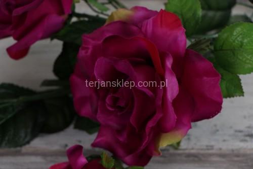 7b8755aadcdc96 Róża gał. C1237 C c.róż/biskupi - Sklep internetowy TERJAN hurtownia ...